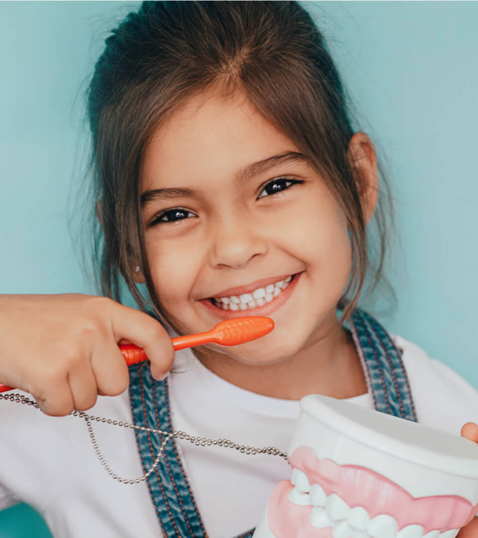 cute child posing with toothbrush and dentures model
